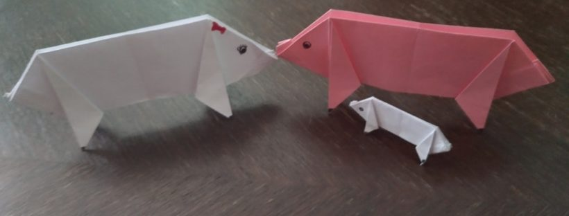 Stem Little Explorers How To Make Origami Pig Step By Step Guide